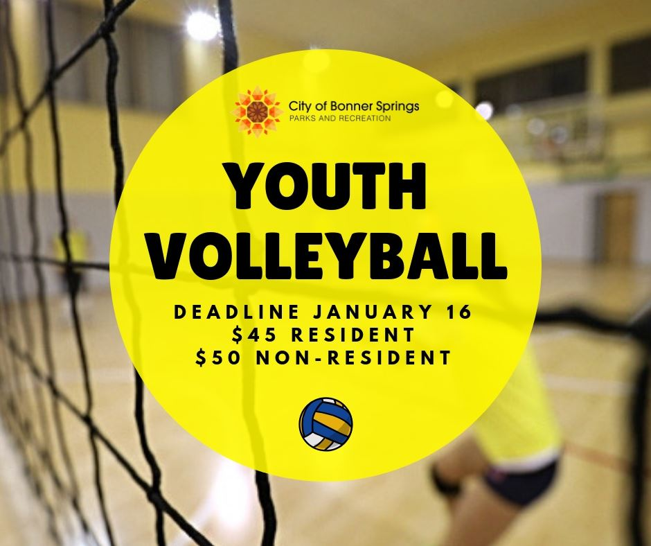 youthvolleyball