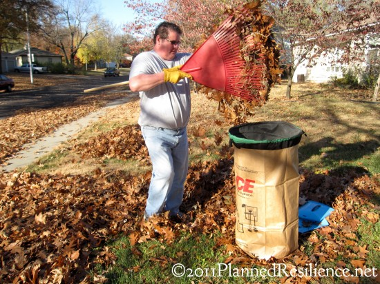 Raking Leaves.jpg